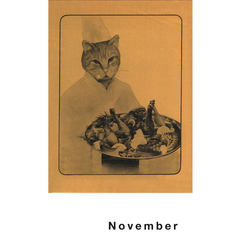 Streuner Teil 2 Postkartenkalender