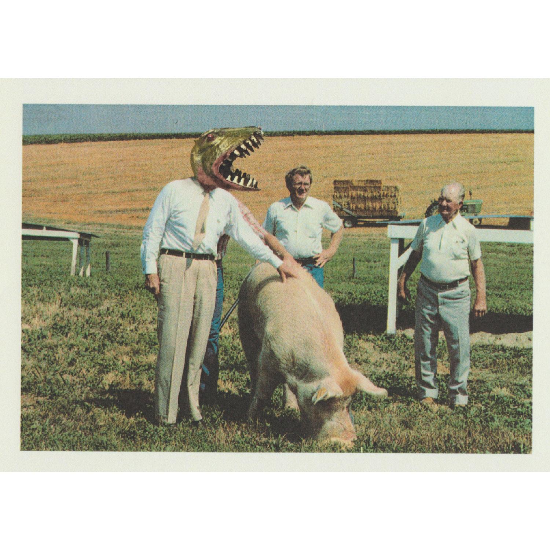 Unsere kleine Farm Postkarte