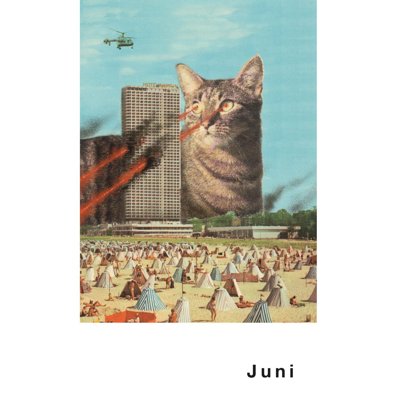 Streuner Postkartenkalender