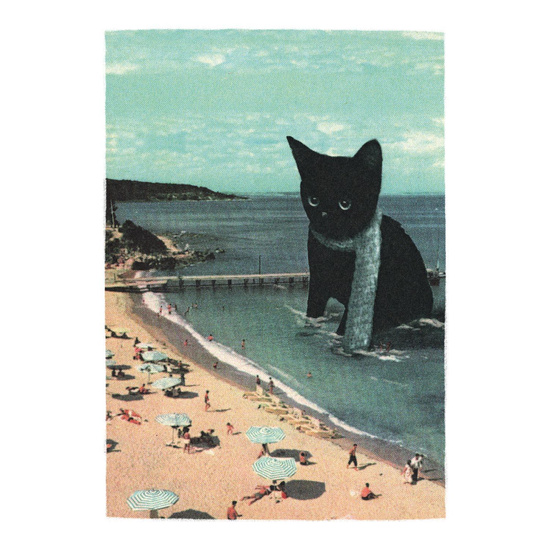 Strandkatze